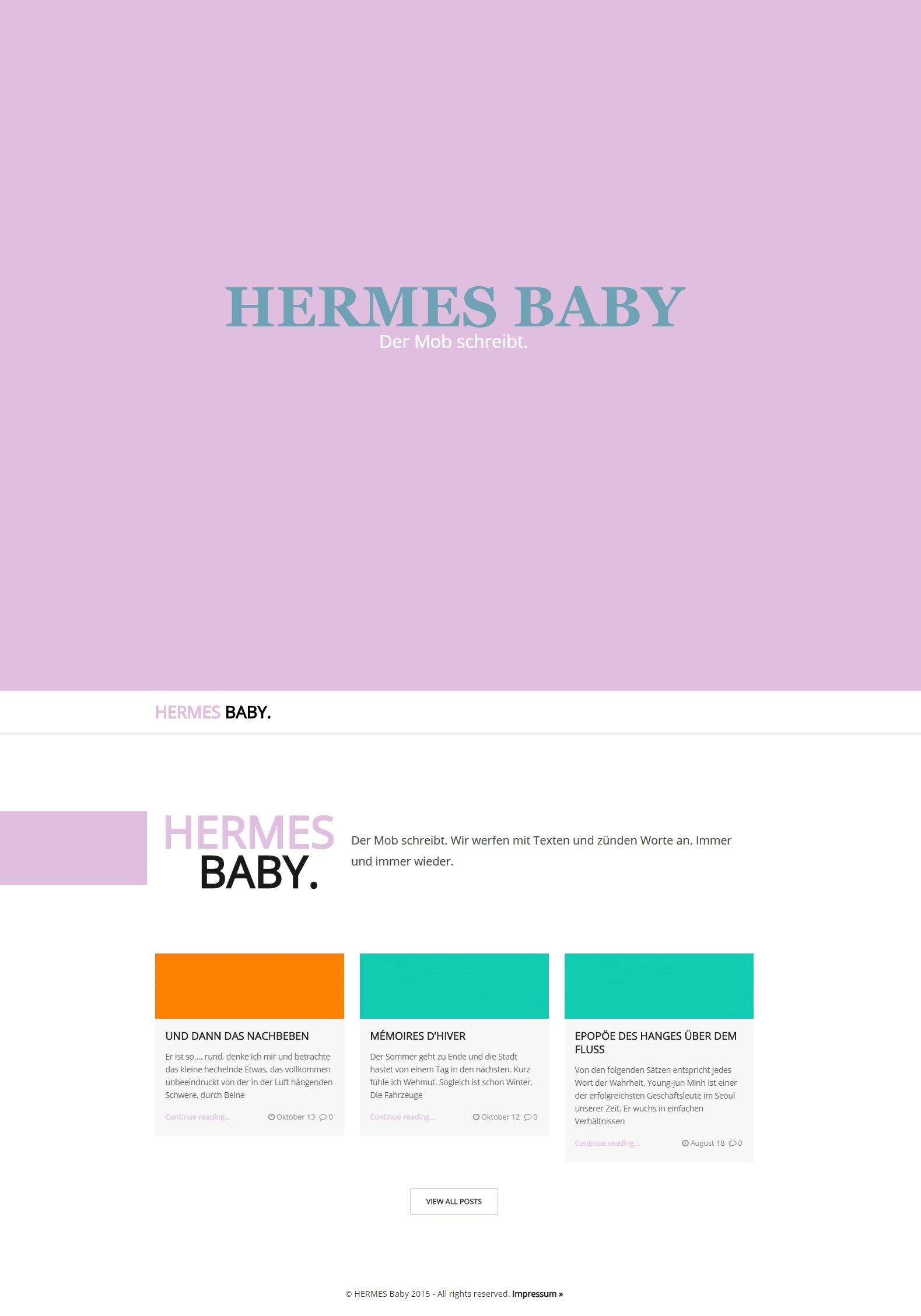 screenshot hermes baby webseite beispiel webentwicklung wordpress